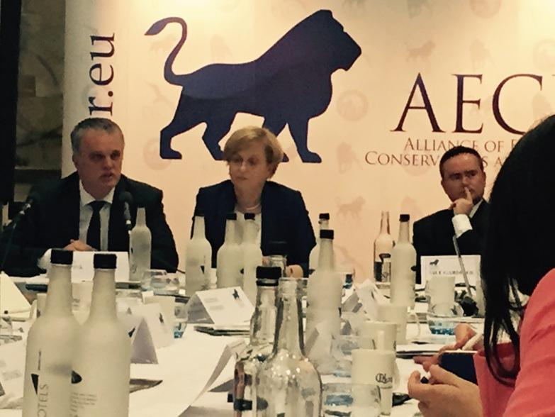AECF Павловић: Ко су партнери на које НАТО рачуна у борби за демократију?