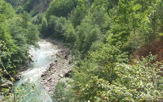 Kanjon TARA