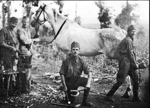 austrougarski konjusari Зашто су Срби прогнани из Хрватске (први дио)?
