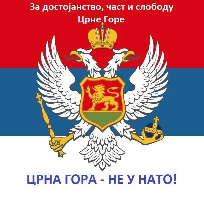 zastava22