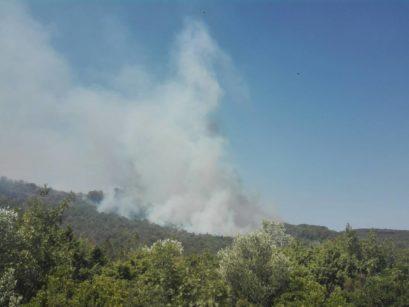 02 409x307 Апел Општине Херцег Нови: Грађани да се укључе у гашење пожара, ситуација алармантна