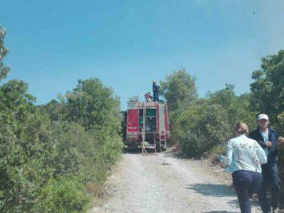 04 409x307 Апел Општине Херцег Нови: Грађани да се укључе у гашење пожара, ситуација алармантна
