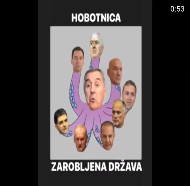 Hobotnica,
