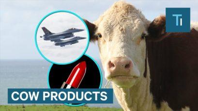 Krava, avioni